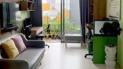 4 result 28 Ho Chi Minh Rental Properties